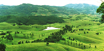 Green Valley View